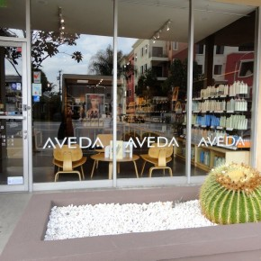 Cash Mob at Lux Aveda Salon/Spa