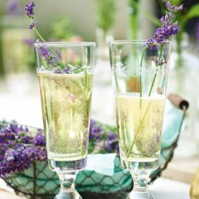 Event >> Bubbles and Botanicals 9.8.17